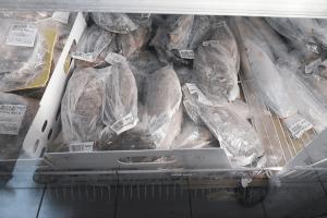 パラオWCTCの冷凍魚