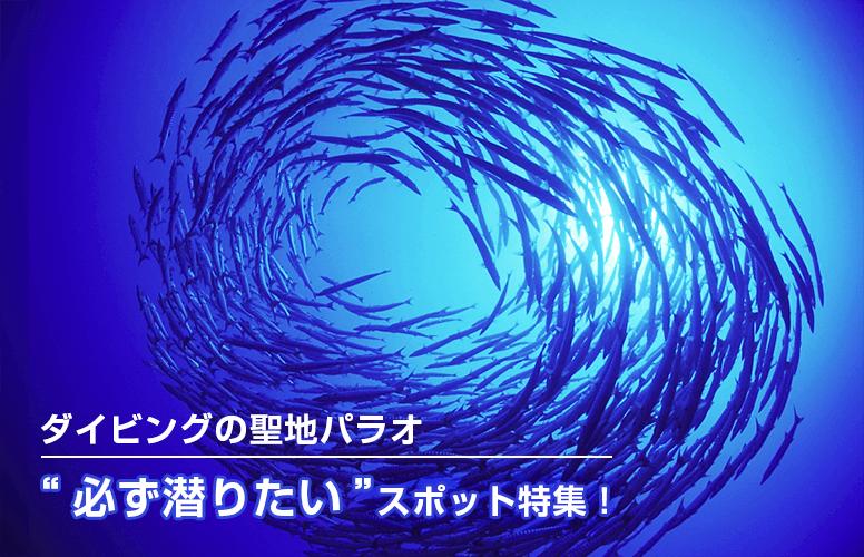 """【初めての方用】ダイビングの聖地パラオ!""""必ず潜りたい""""スポット特集!"""
